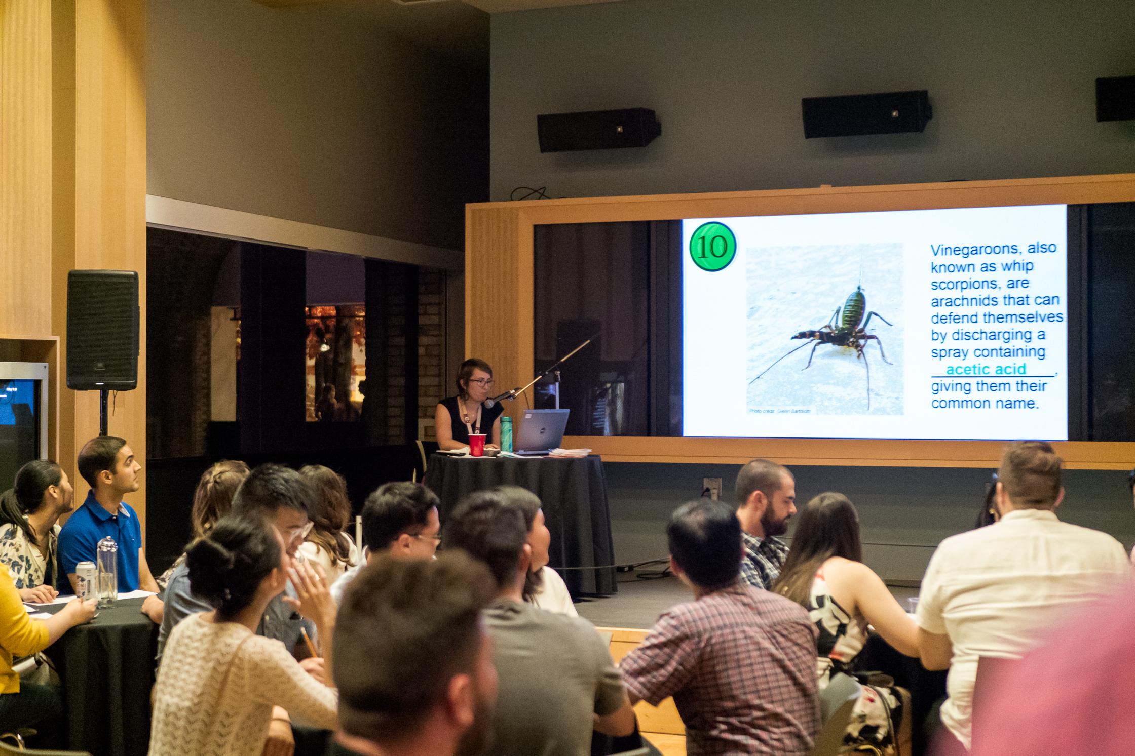 FNLROM Arachnophobia (25 of 96).jpg