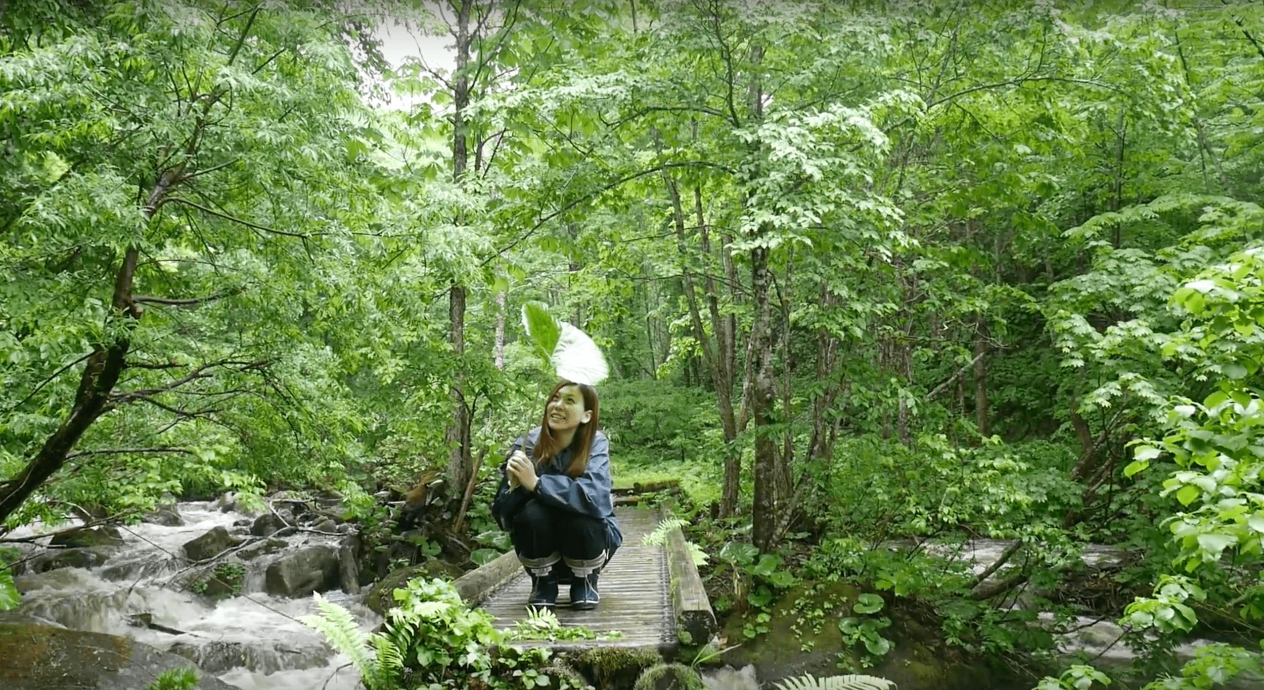 Beautiful hiking scenery