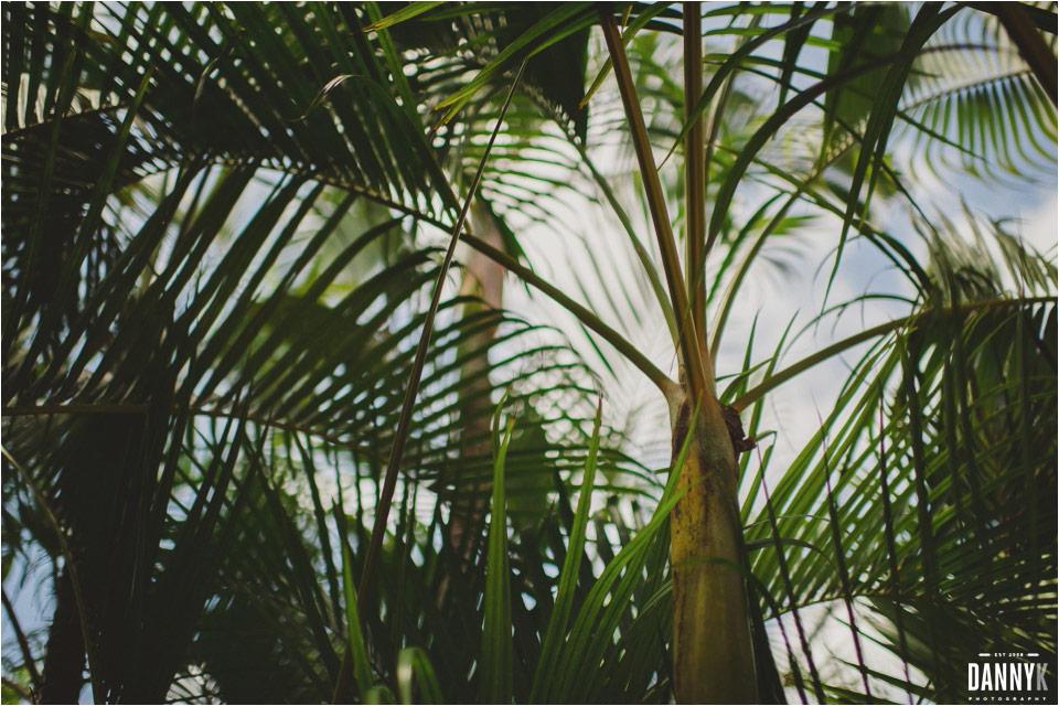 02_Hawaii_Indian_Destination_Wedding_Nalangu.jpg