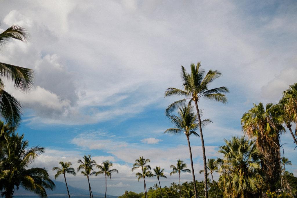 Same_Sex_Maui_Hawaii_Destination_Wedding_01.jpg
