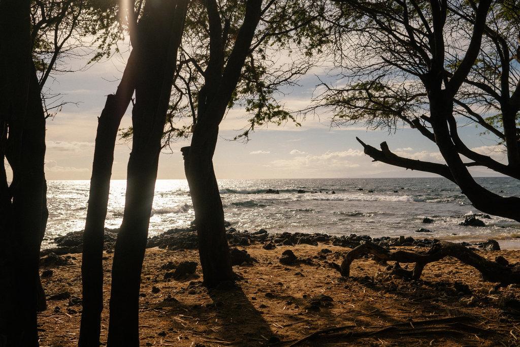Same_Sex_Maui_Hawaii_Destination_Wedding_19.jpg