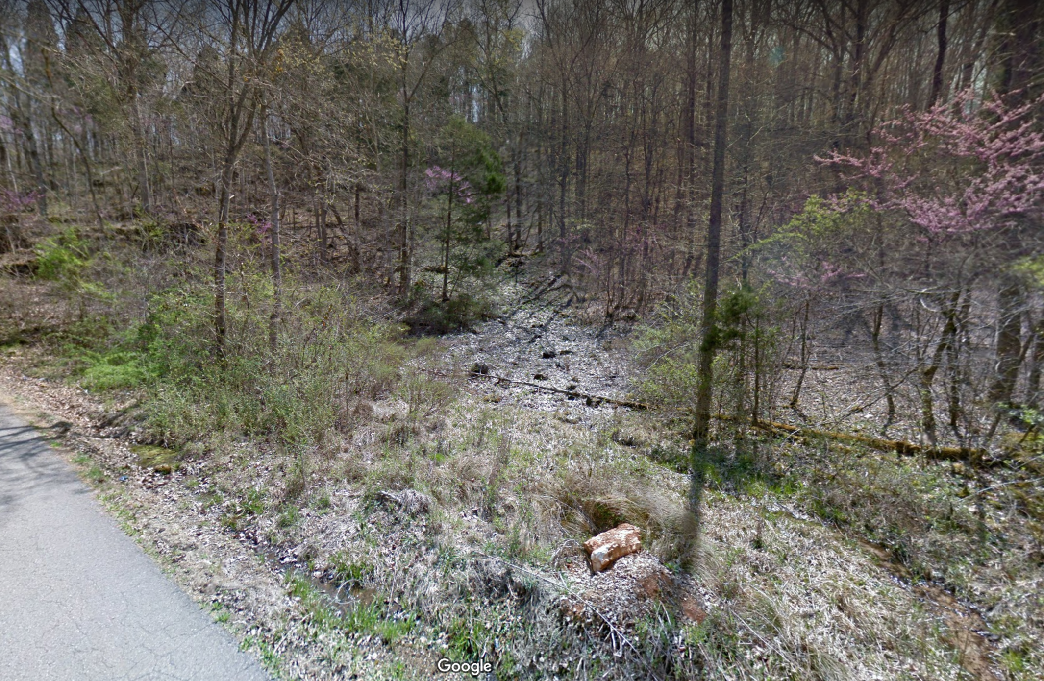 """Google Earth street view image of the initial seep discovered by Aaron Floden in Campbell Co., Tennessee. He found this seep first by using Google Earth street view to do a """"virtual backroad survey."""" Credit: Google Earth."""
