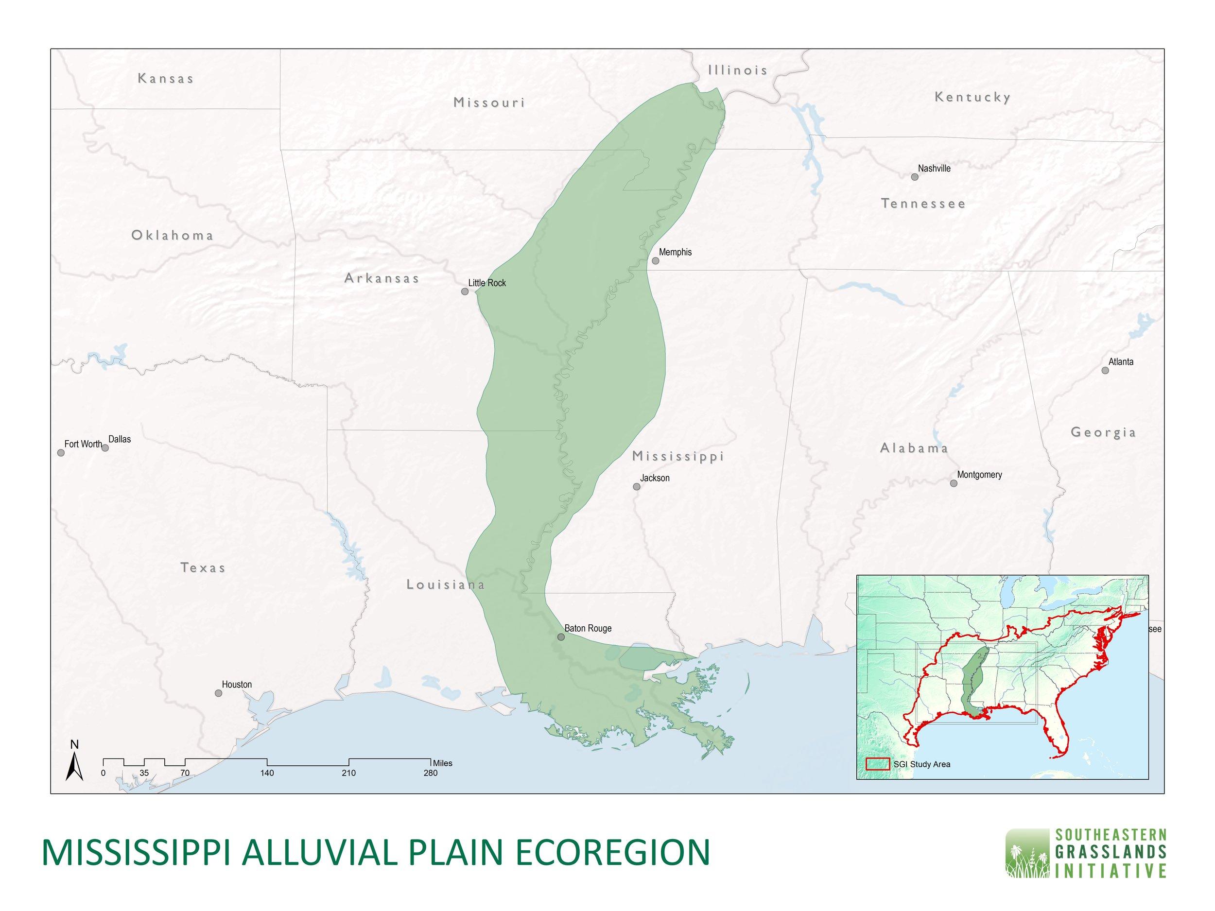 Mississippi Alluvial Plain