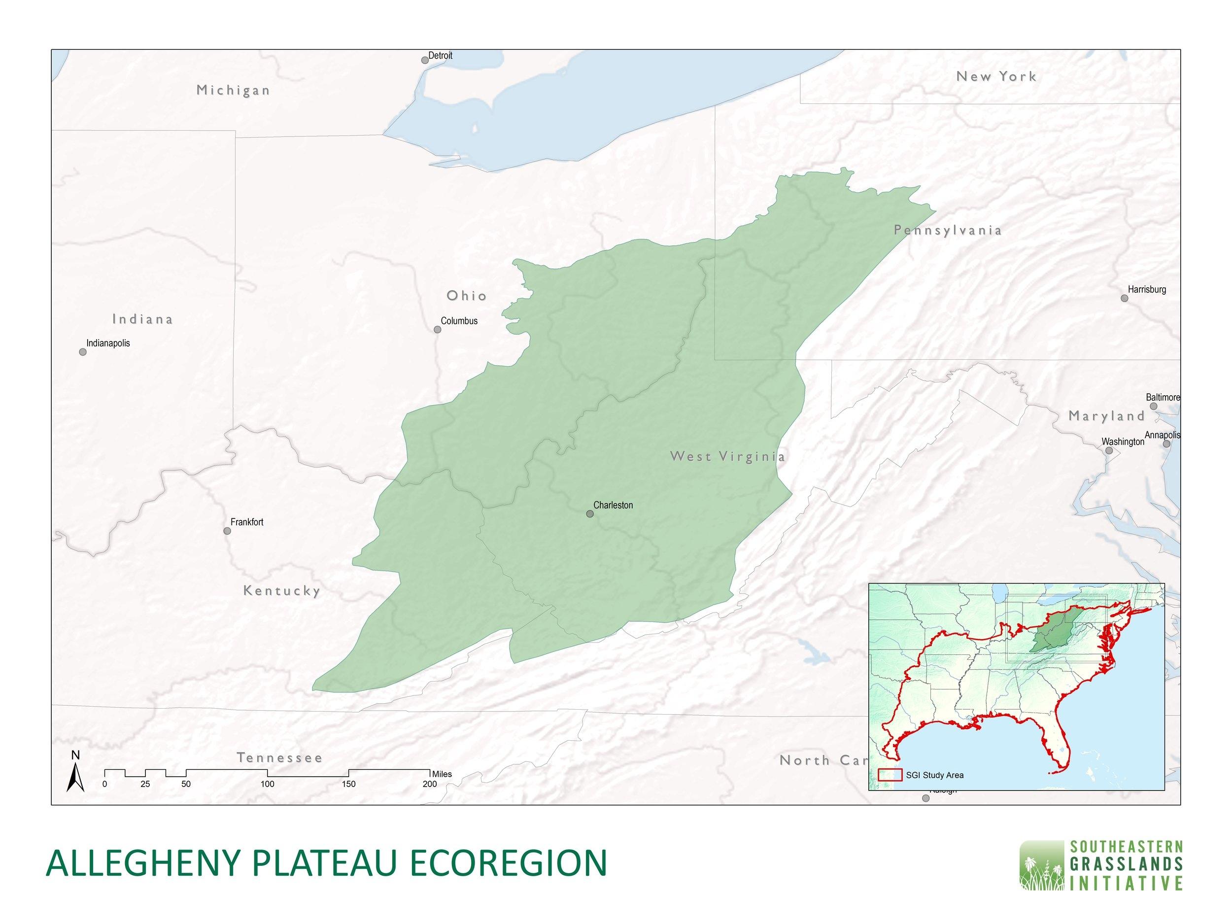 Allegheny Plateau