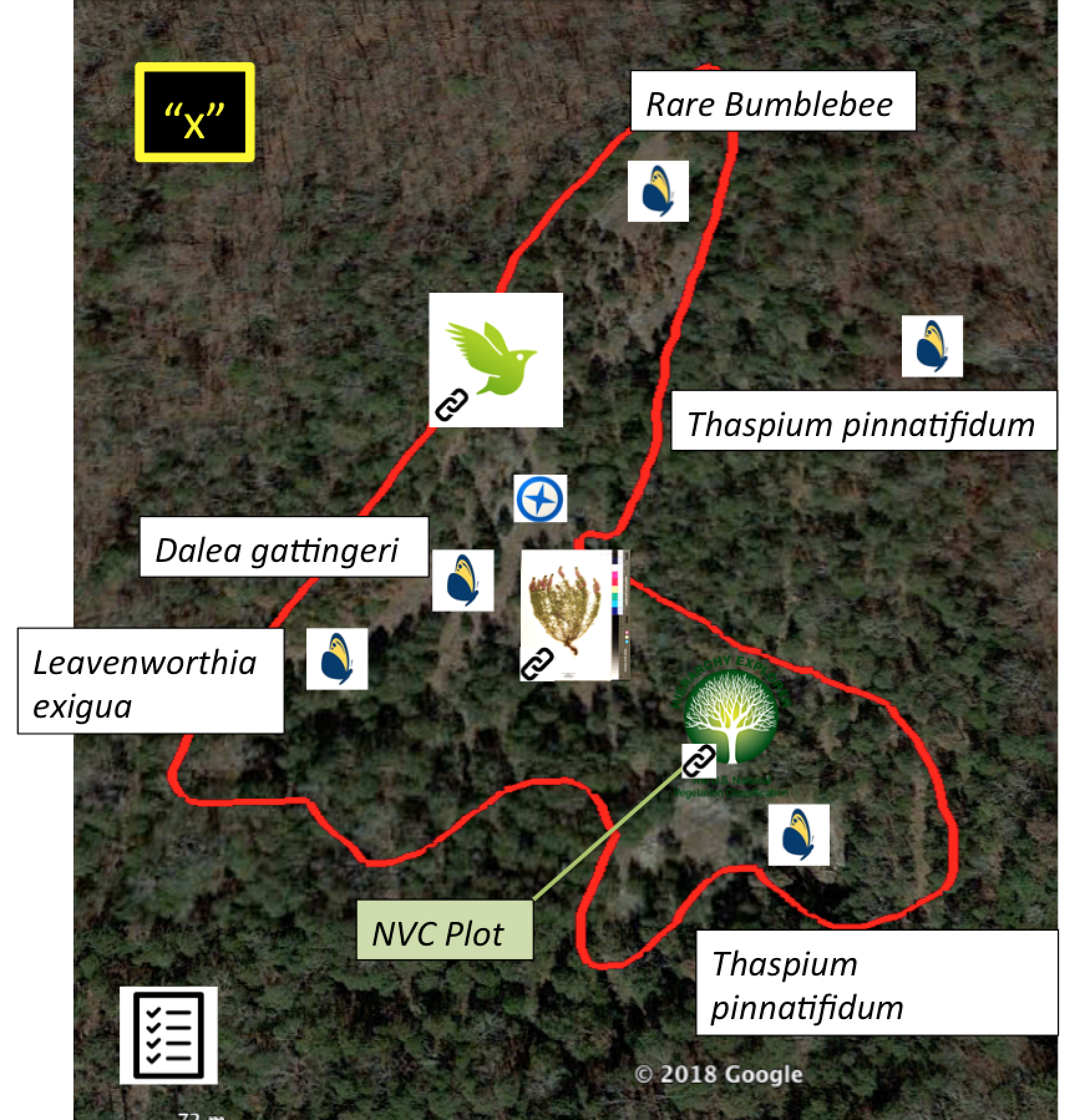 "NatureServe's Butterfly Icon = Rare Species Records; NVC Tree Icon = Vegetation Plots; Panoramio Symbol = Photos; iNaturalist Icon = iNaturalist record; ""x"" symbol = historical quote; Checklist icon = Site Notes and Species Checklists"