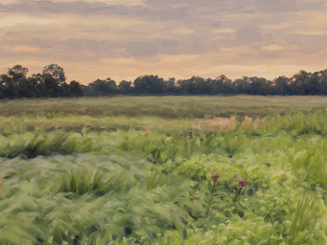 Grigsby Prairie, Cook County, Illinois, July 25, 2015, Oil on canvas, 12 x 16 in. By Philip Juras.