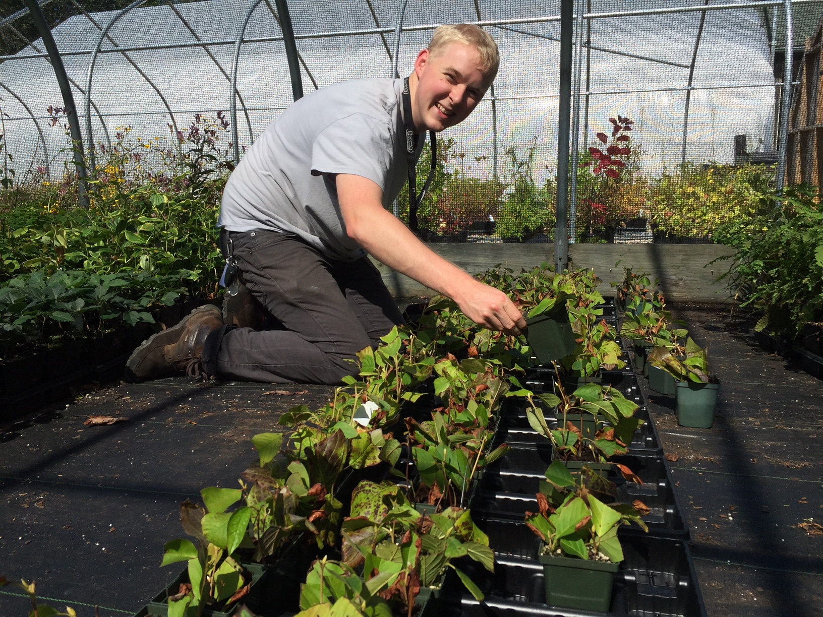 Conservation Horticulture