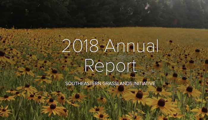 SGI 2018 annual rpt cover.png