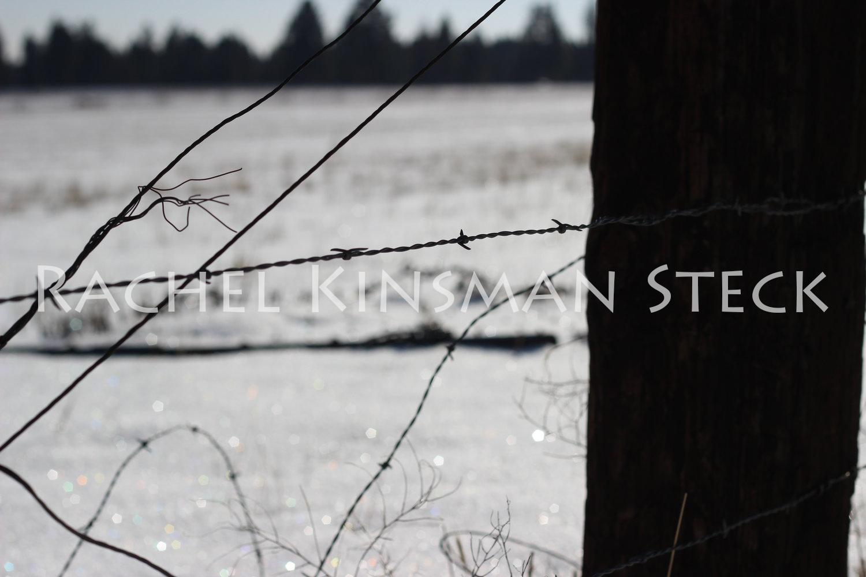 WinterontheRanch.jpg