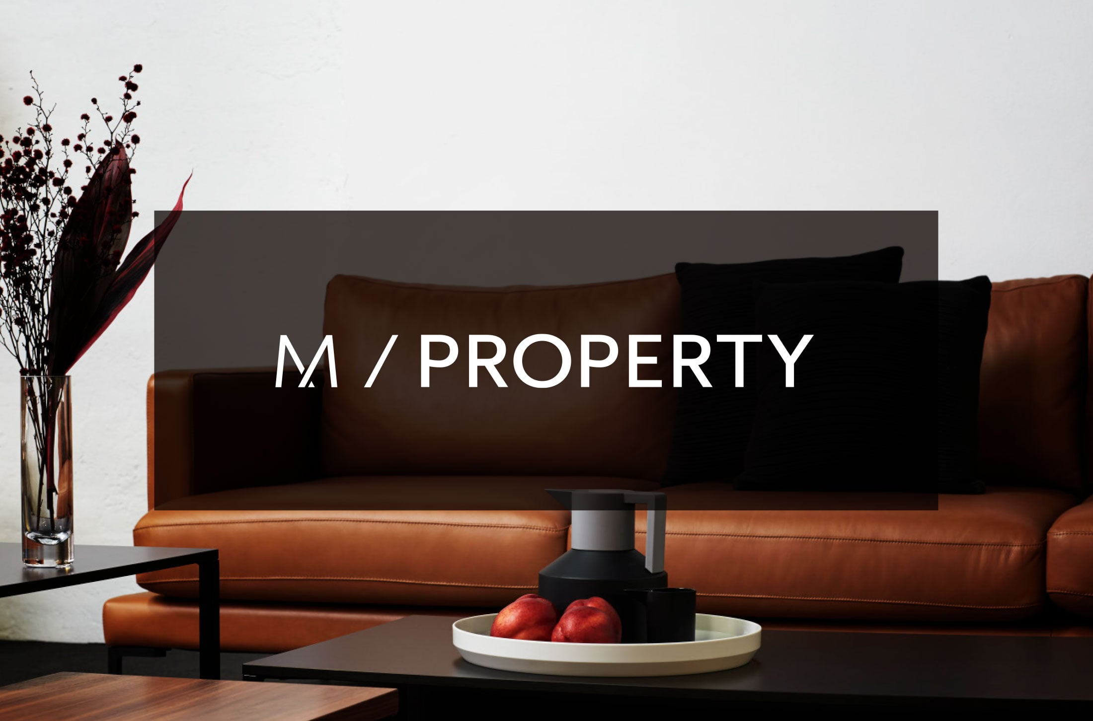 MPROPERTY.jpg
