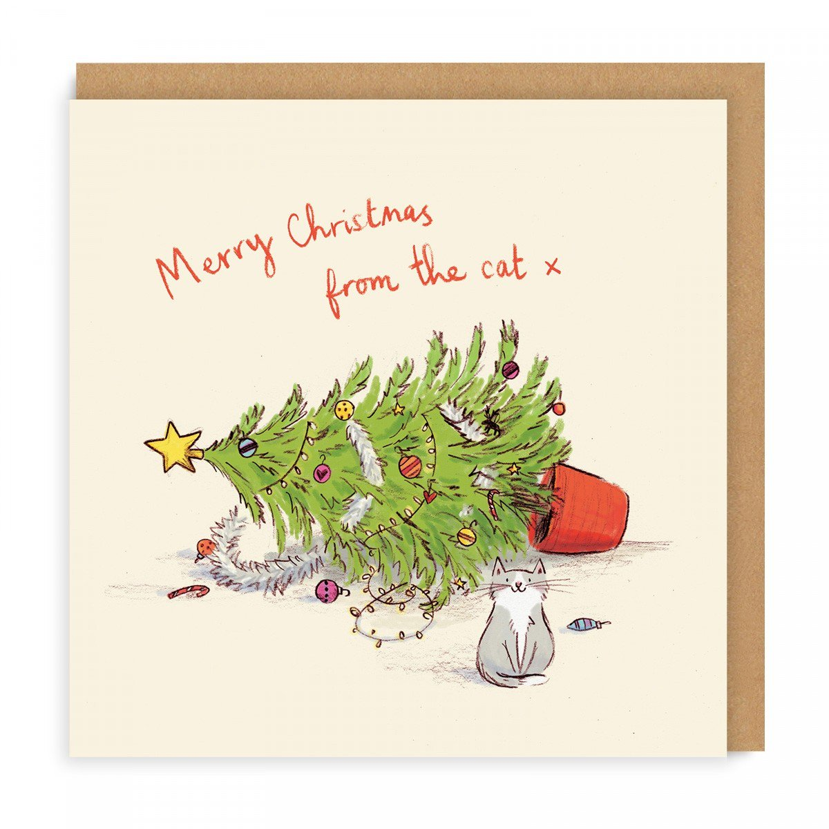 rcm-gc-002-sq-merry-christmas-from-the-cat.jpg