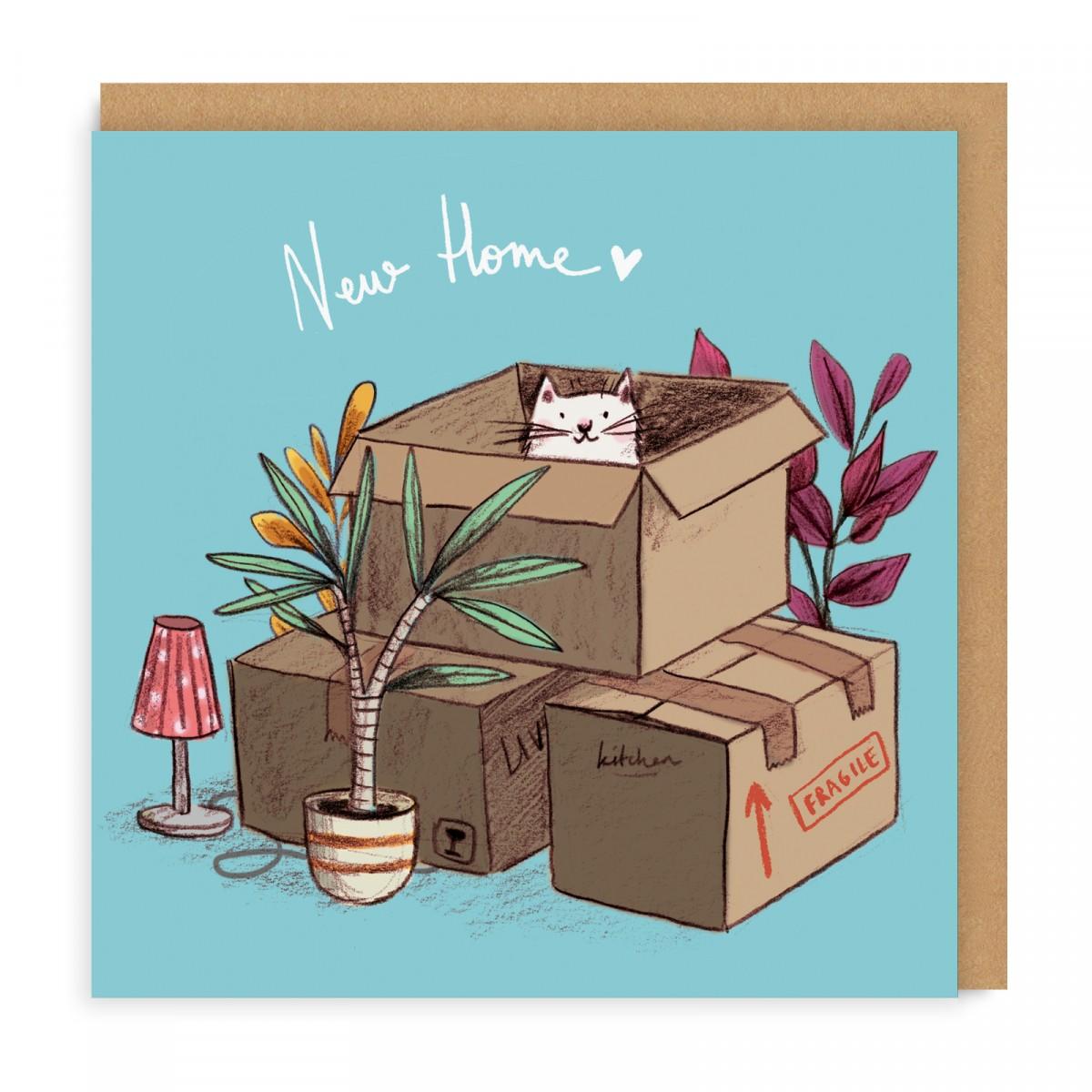 rcm-gc-001-sq_new_home_cat_boxes_.jpg