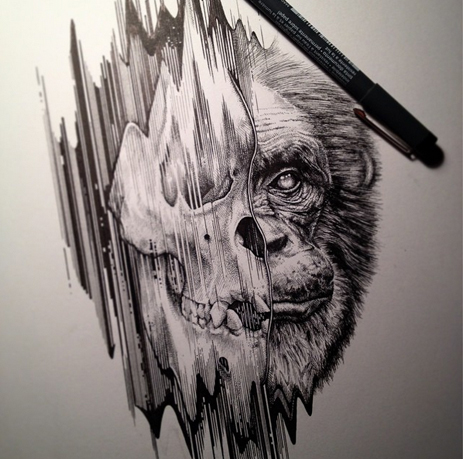 Paul Jackson chimp illustration .jpg