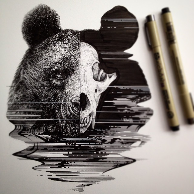 bear ink drawing Paul Jackson