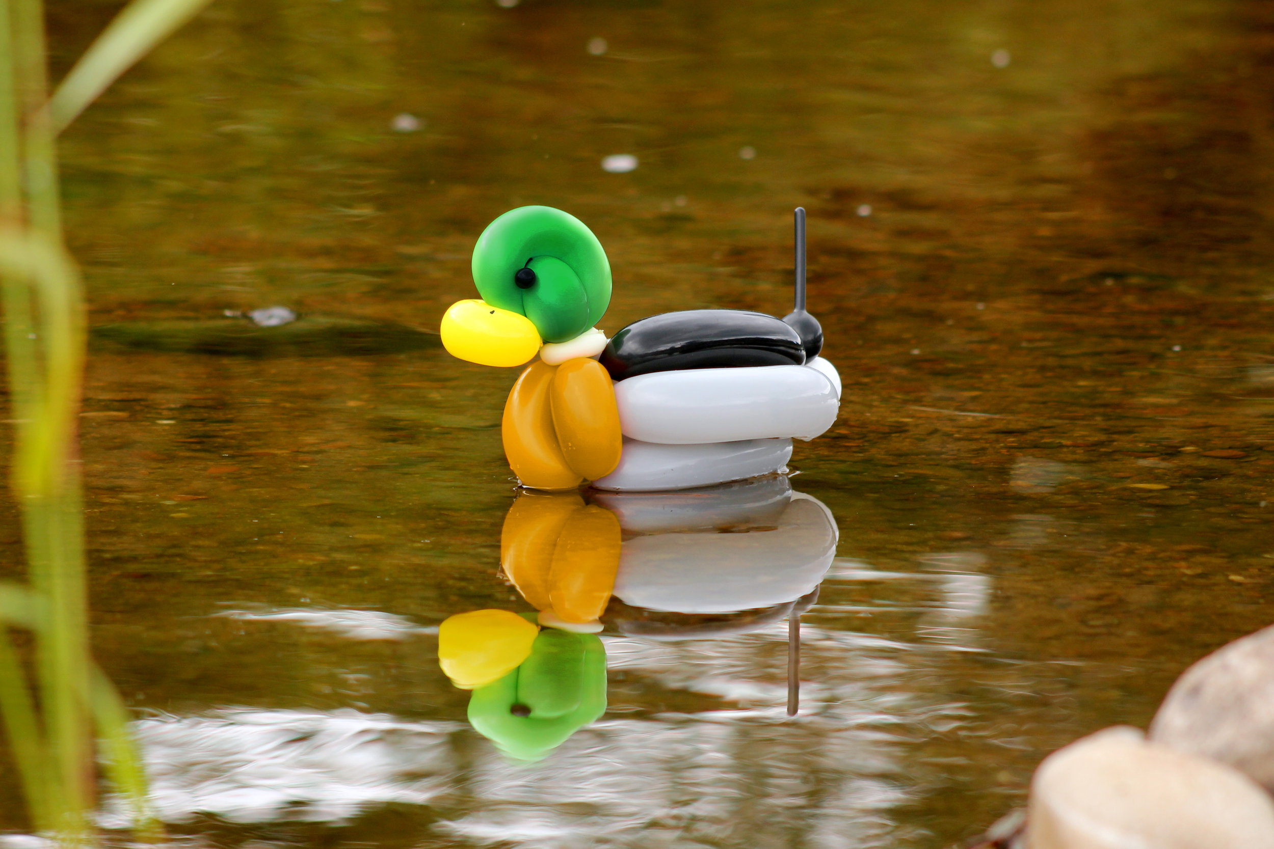 DuckFinal2.jpg