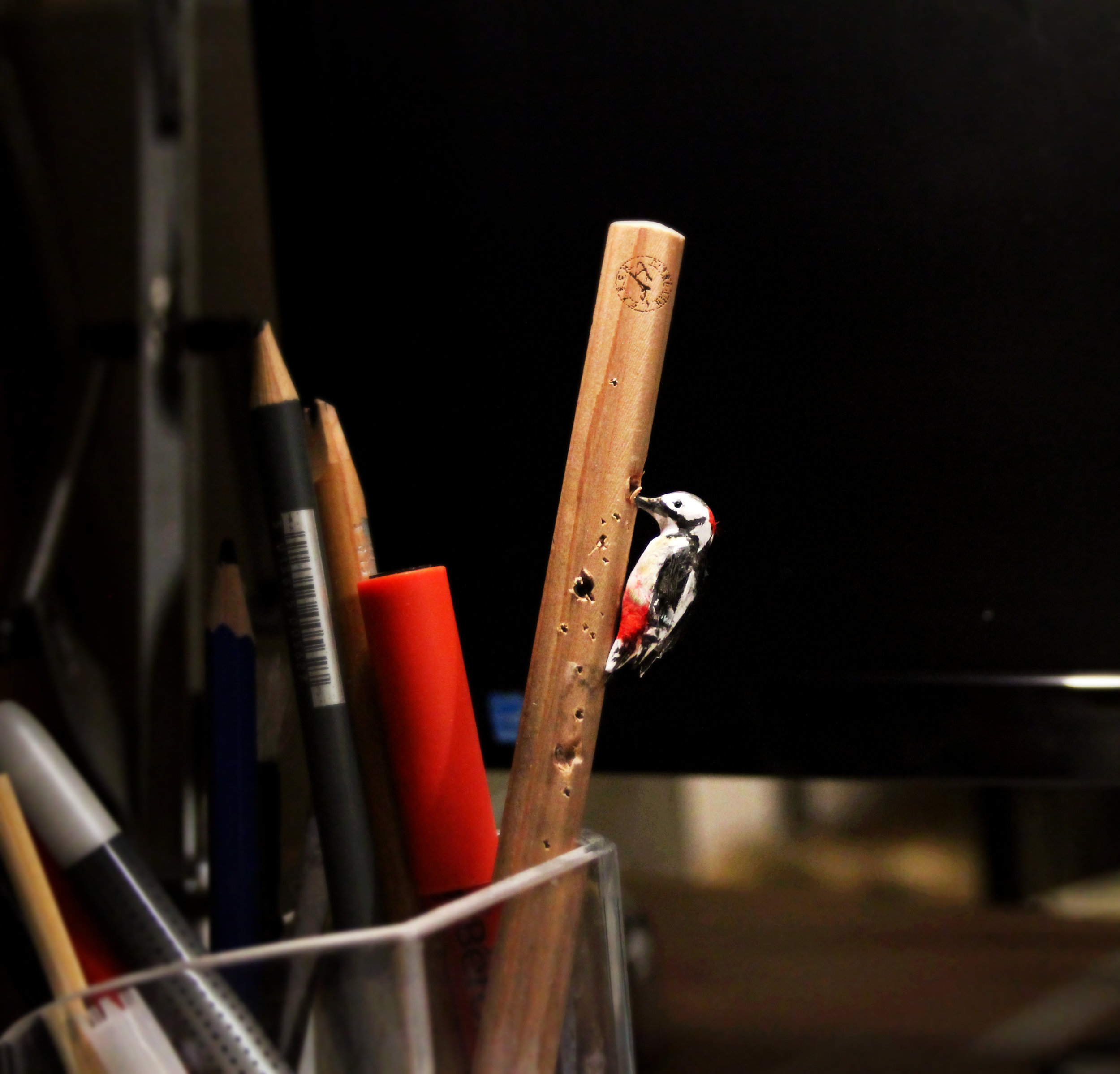 MicroBird-WoodPecker.jpg