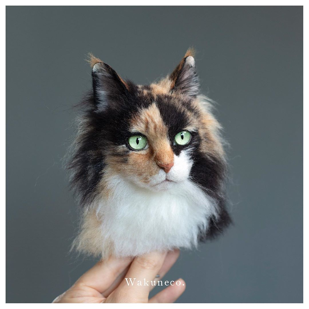 long hair cat portrait.jpg