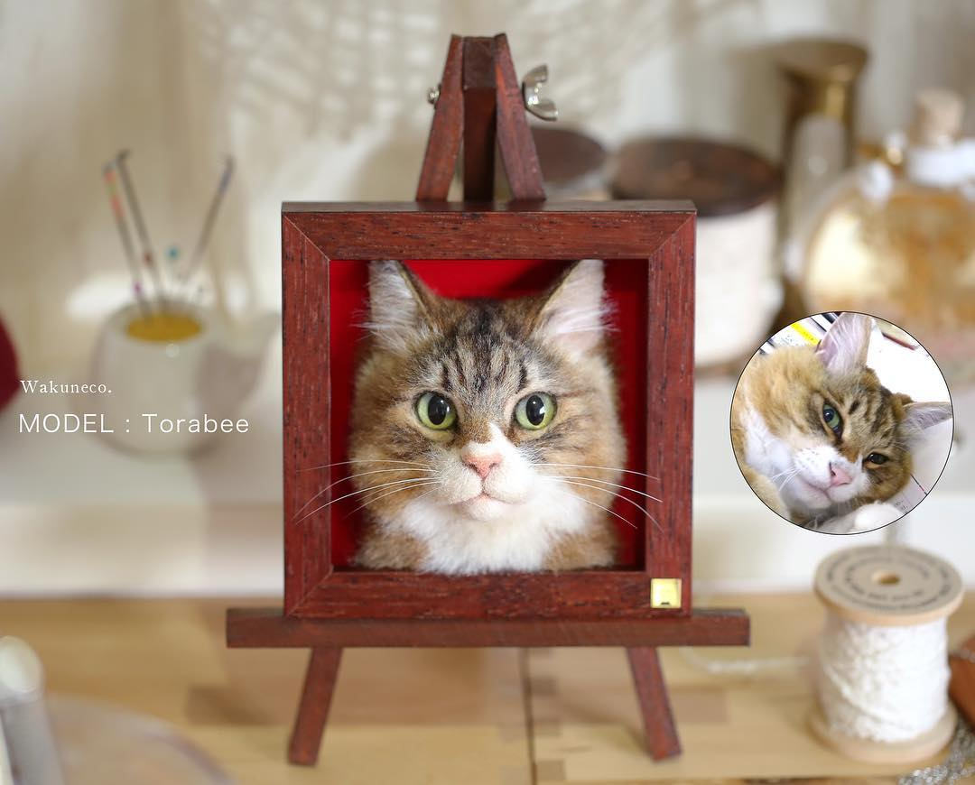 Torabee cat portrait complete and original photo.jpg