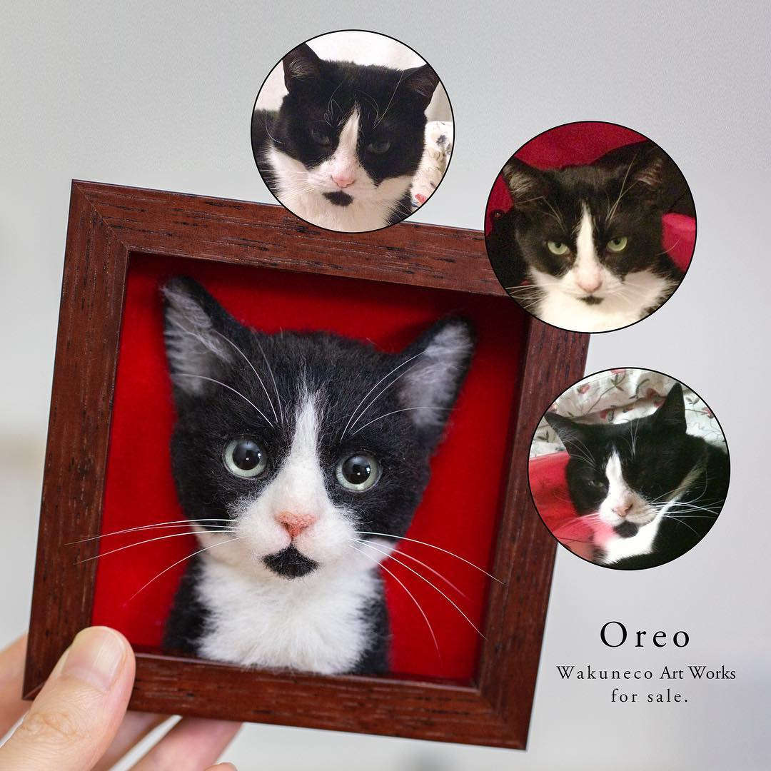 oreo the cat portrait and original images.jpg