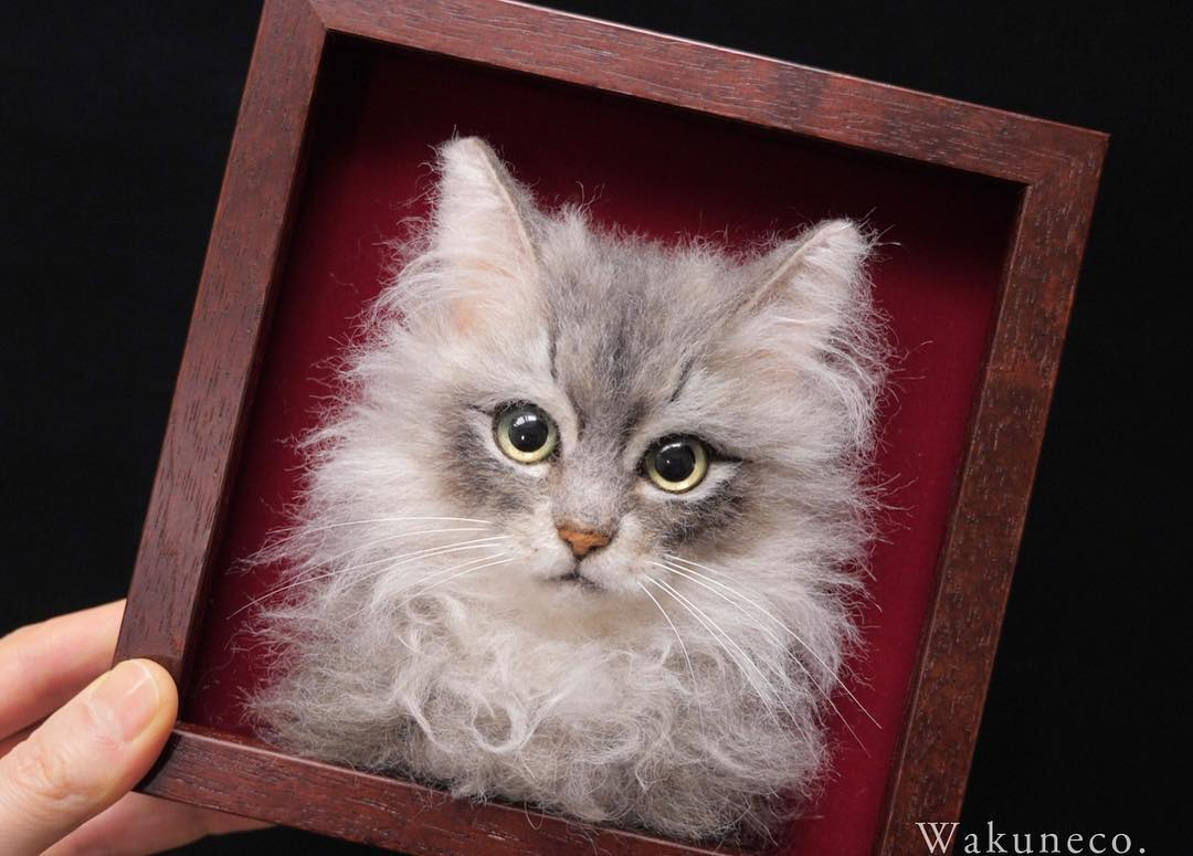 fluffy cat portrait.jpg