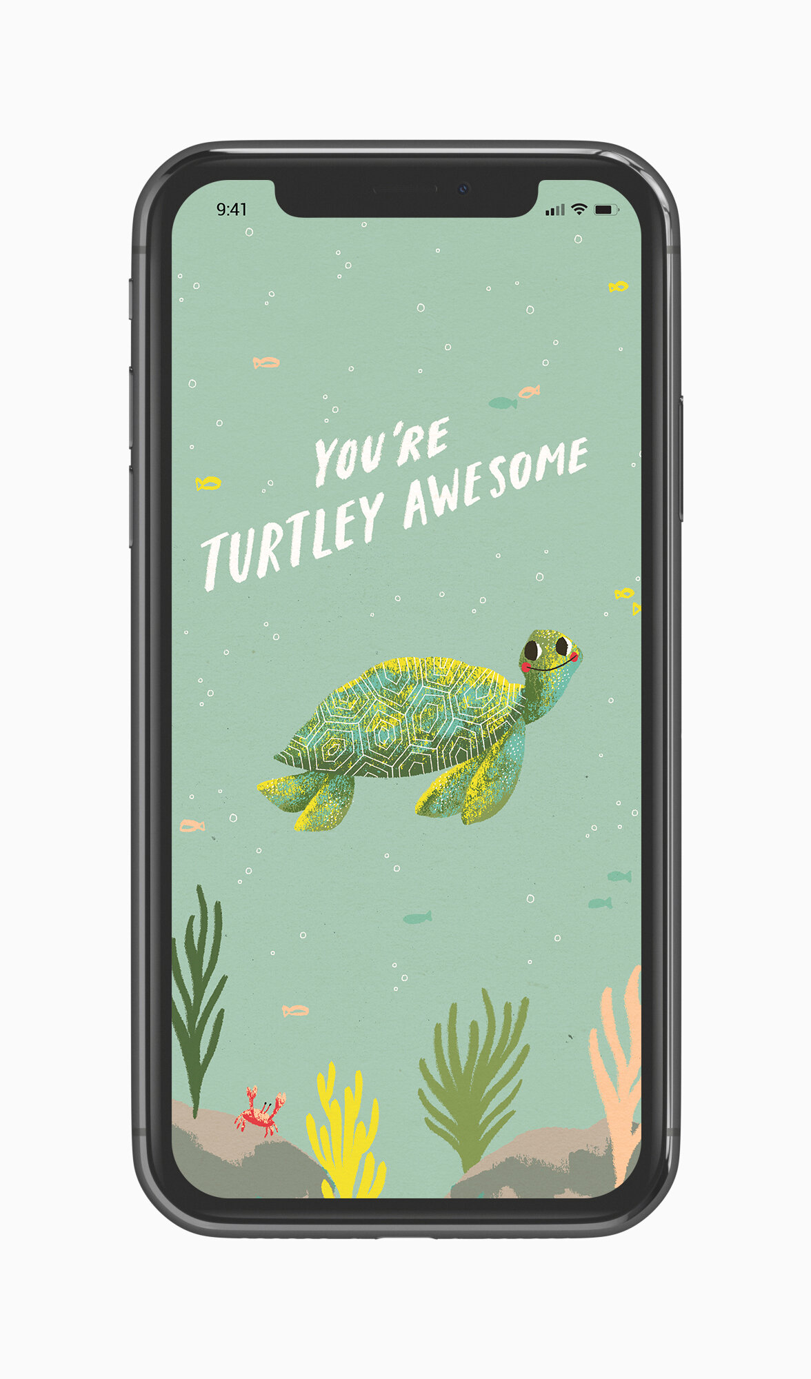 Wallpaper Zoom Background Turtley Awesome Ohh Deer Blog