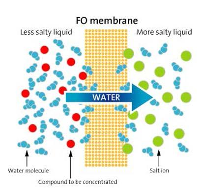 Ammonia membrane stripping -