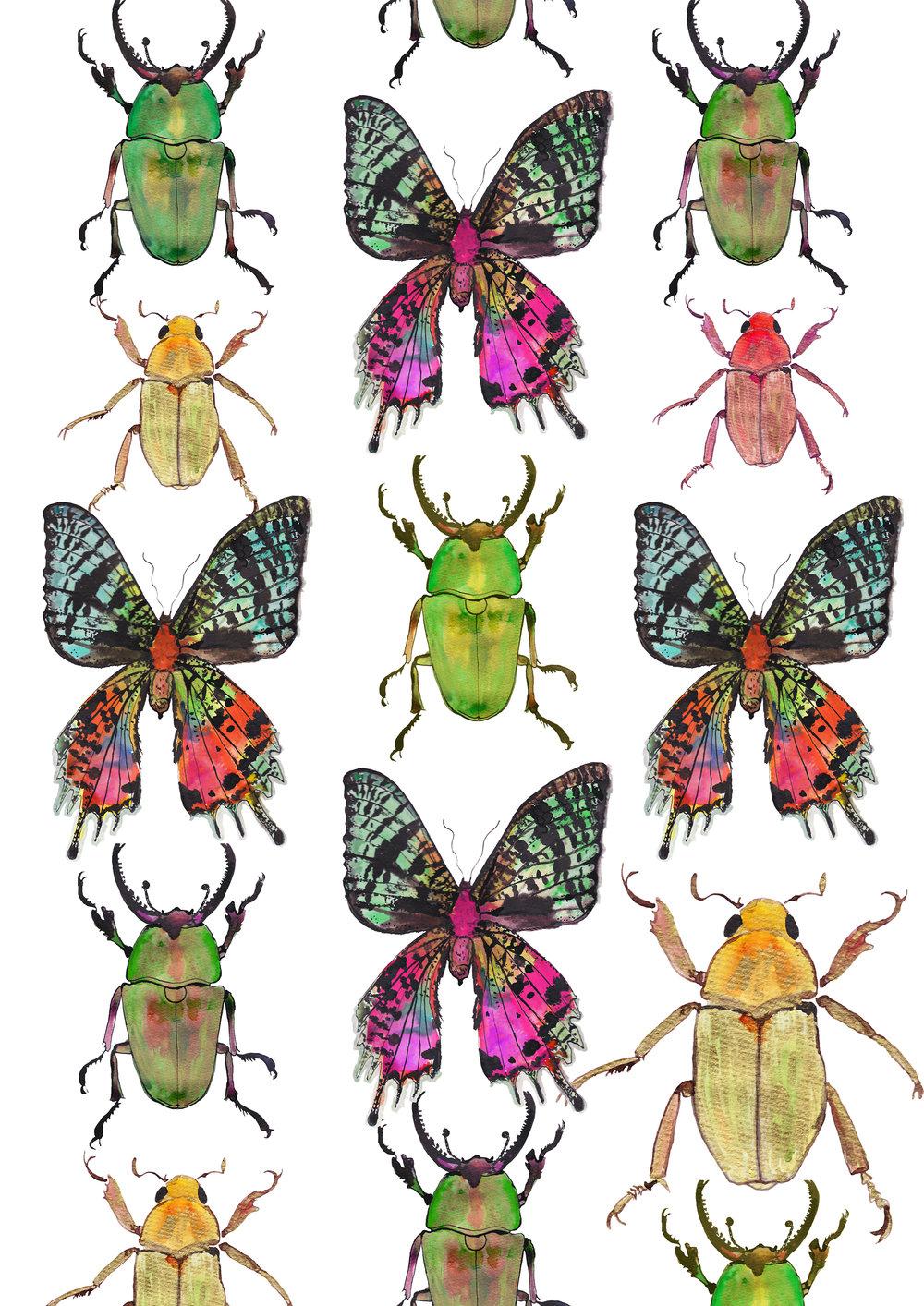 bugs&butterflies+low+res.jpg