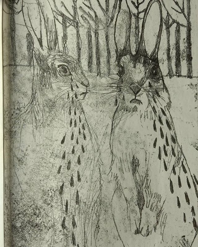 Found back some old drawings #hare #drawing #illustration #monotype #ink #art #artgram