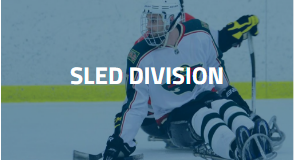 For individuals with physical disabilities that do not allow the player to stand on the ice.