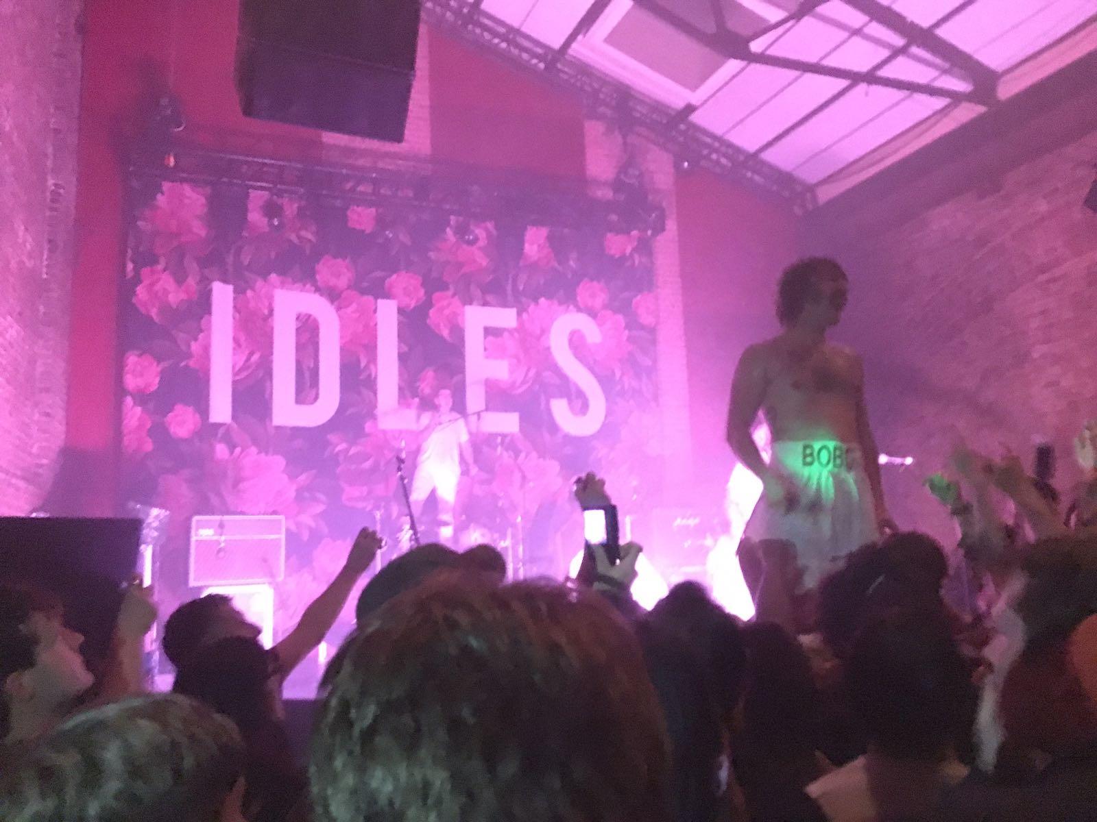idles 2.jpg
