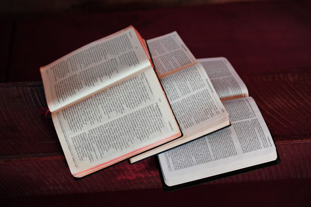 Bibles in Different Languages