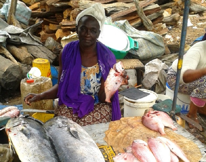 a woman selling fish in an African market complete with whole fish and firewood in the background