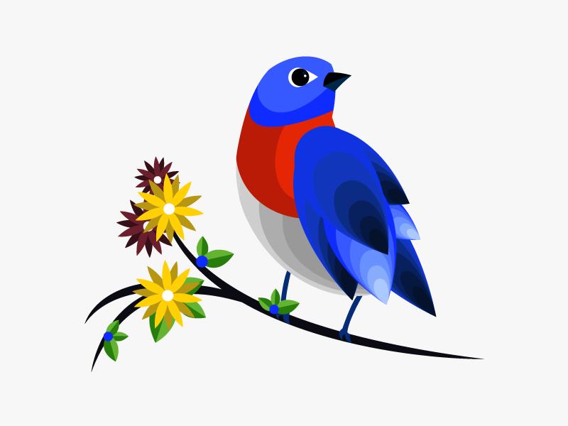 bird_nicole.png