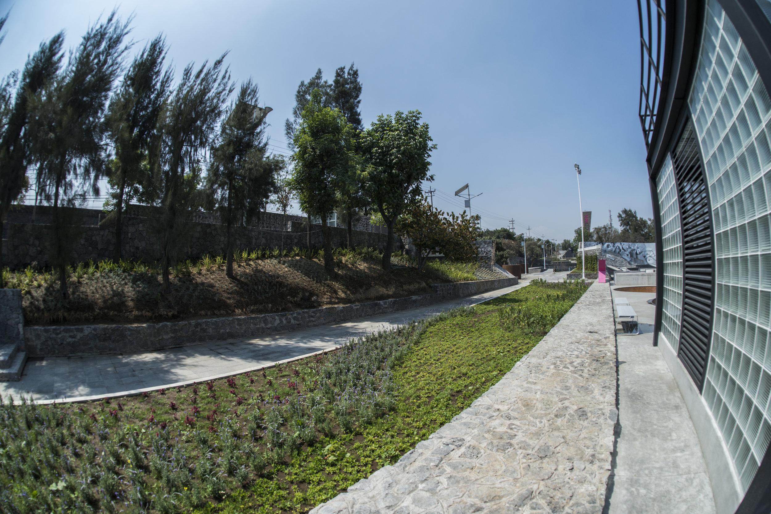 parque0331.jpg