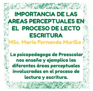 Reconozca las áreas perceptuales que son de gran importancia en el proceso de lectura y escritura de su hijo.