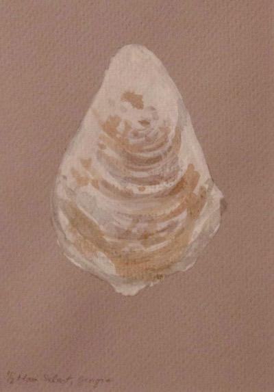 Oyster 4 crop.jpg