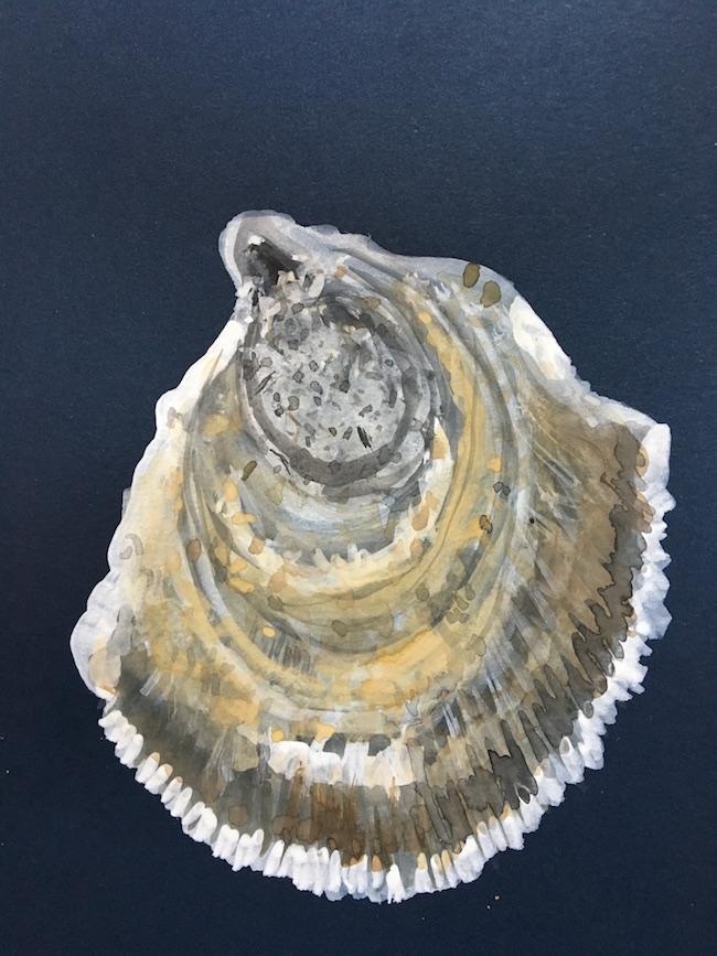 Oyster_5.JPG