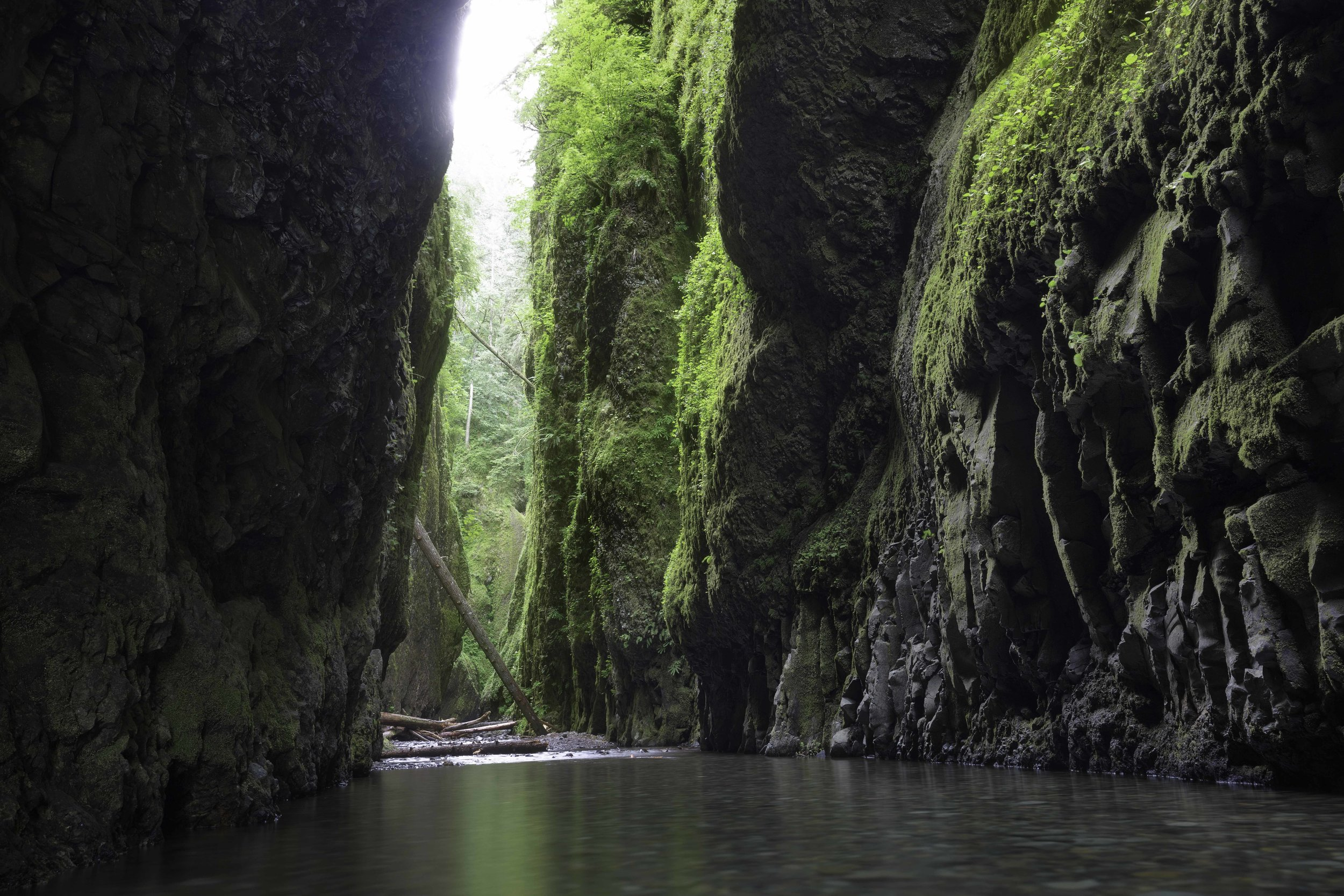 """The Green Mile""  - Oneonta Gorge"