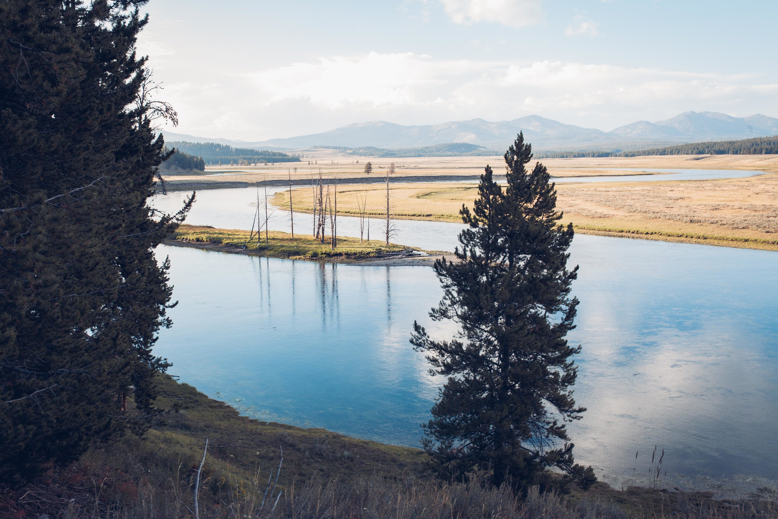 Yellowstone 2018 VSCO james glacier-33.jpg