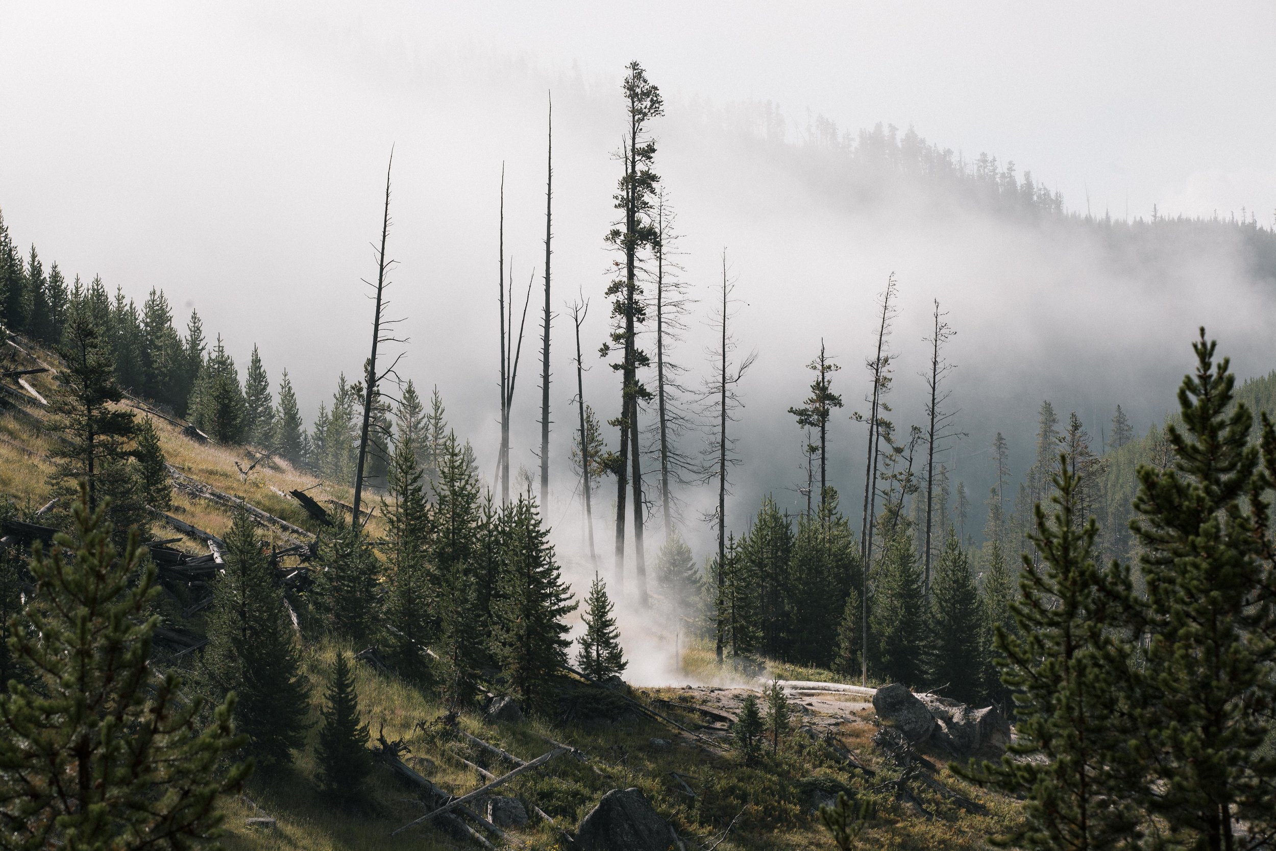 Yellowstone 2018 VSCO james glacier-15.jpg