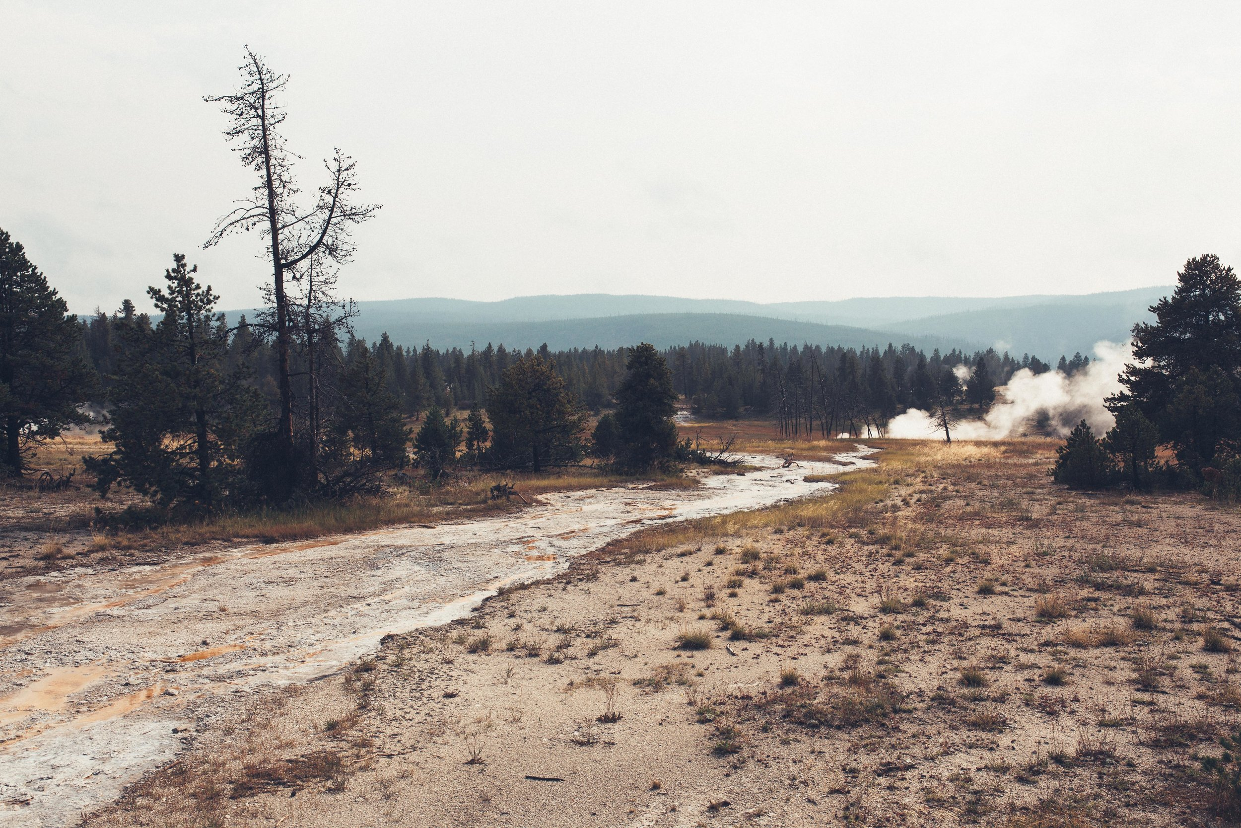 Yellowstone 2018 VSCO james glacier-40.jpg
