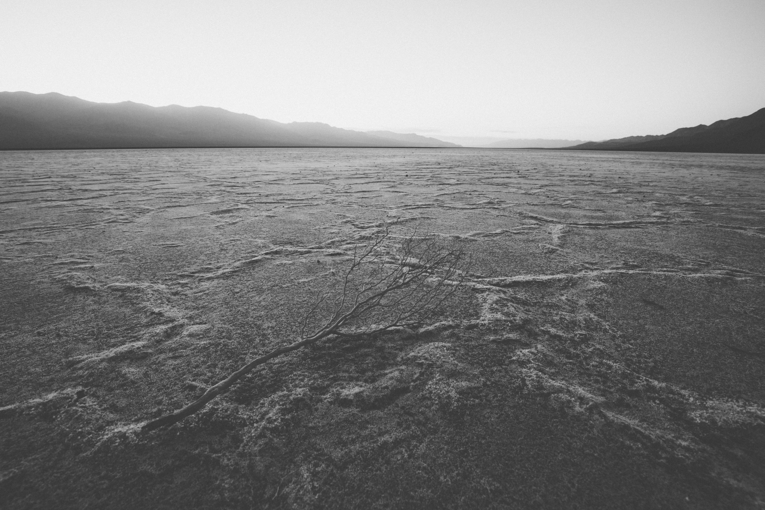 Death Valley James Glacier web-3.jpg