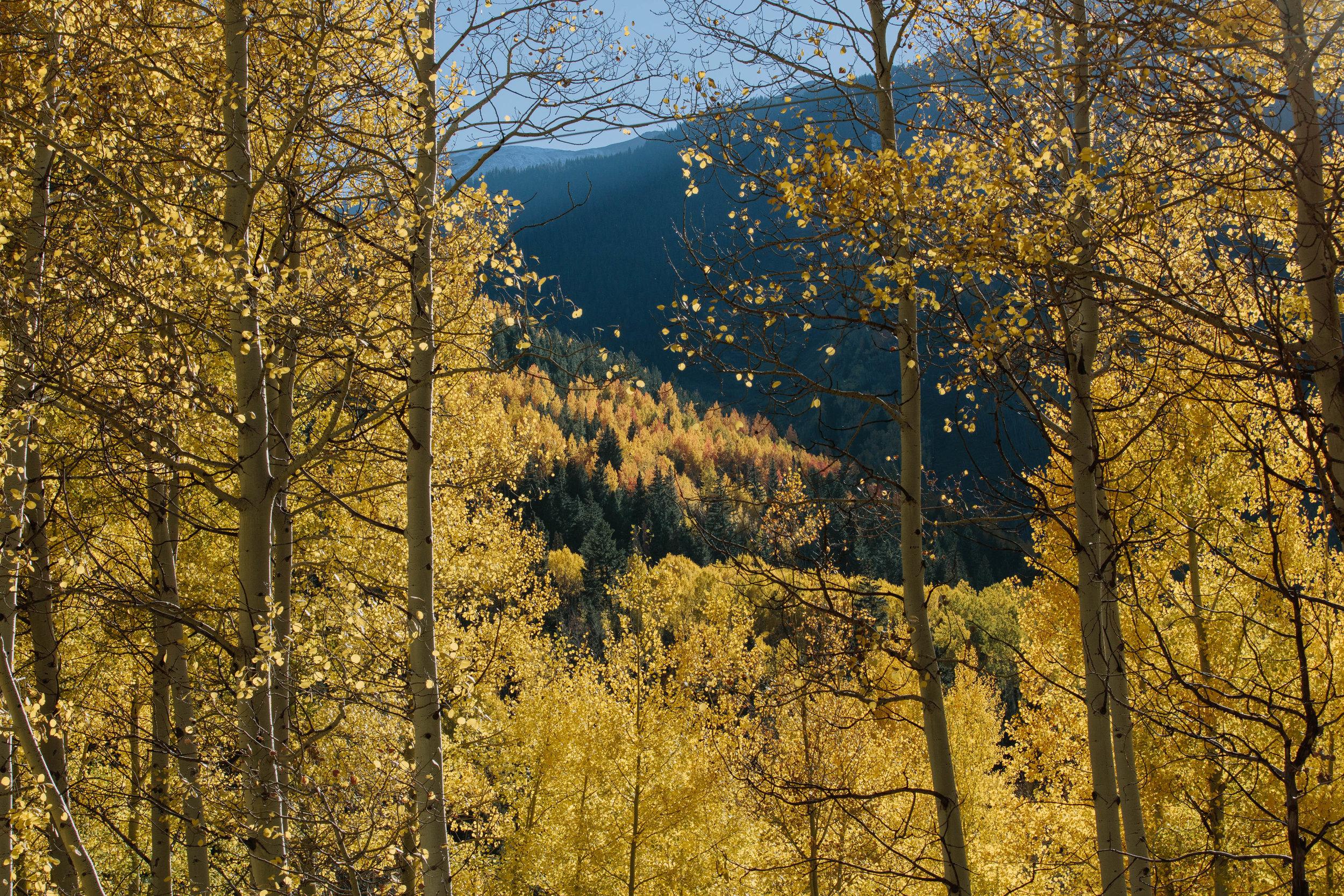 Colorado James Glacier-5.jpg