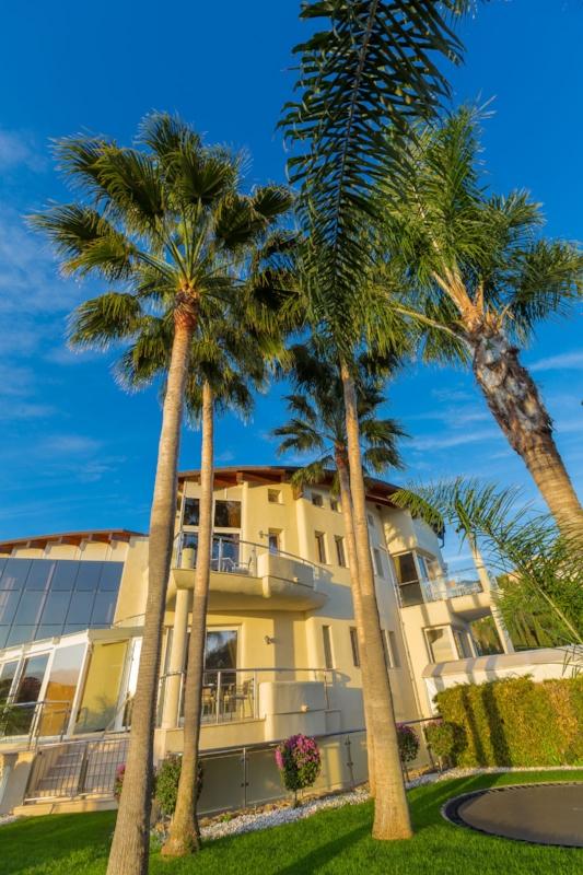 The palm trees at Villa El Cano, DSV Collection, Marbella