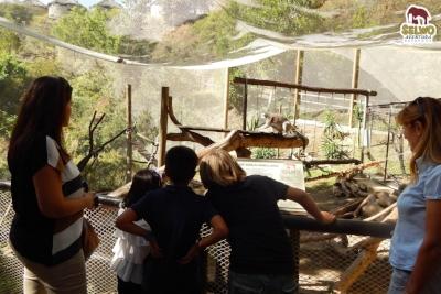Selwo Safari park as recommended by DSV Collection Villa El Cano and Villa El Cid Marbella