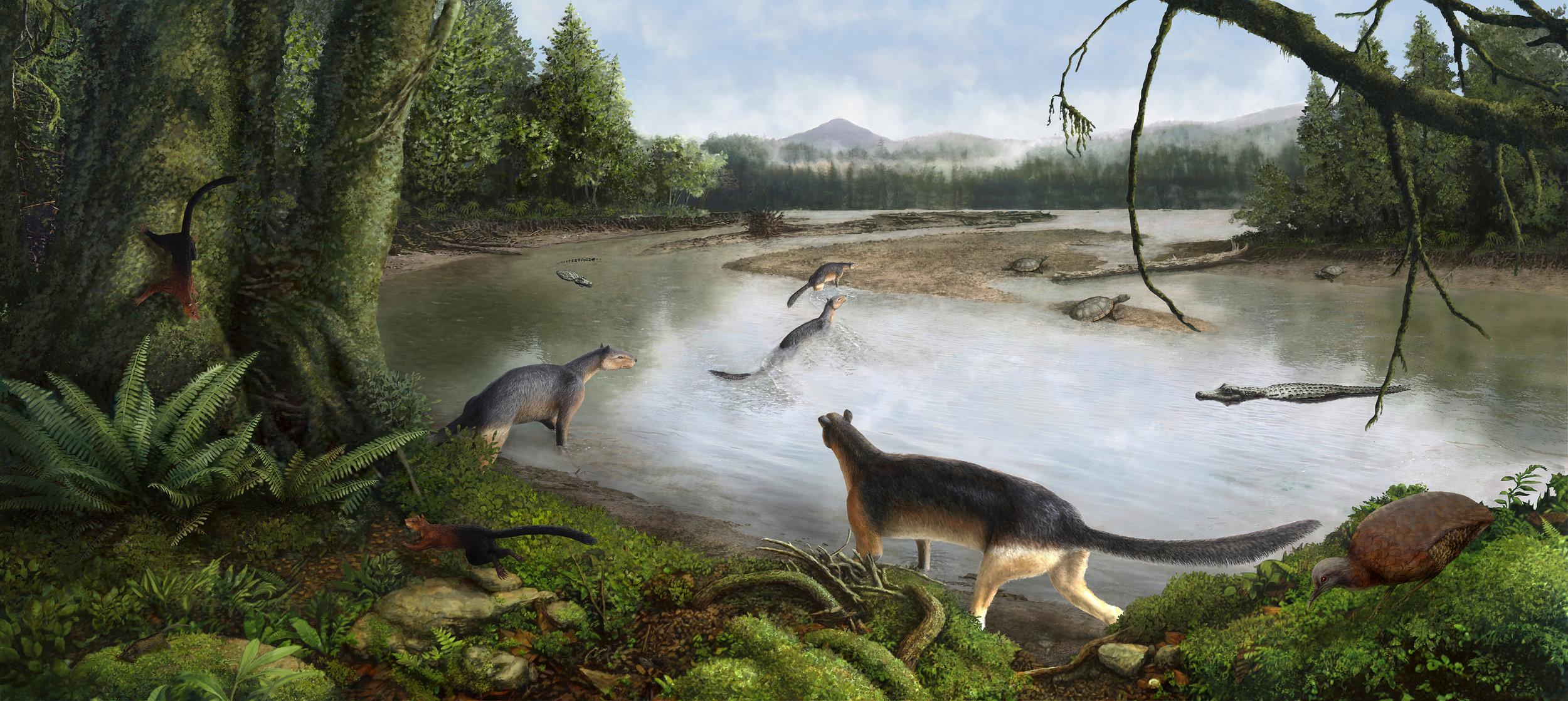 Goler Formation Environmental Reconstruction
