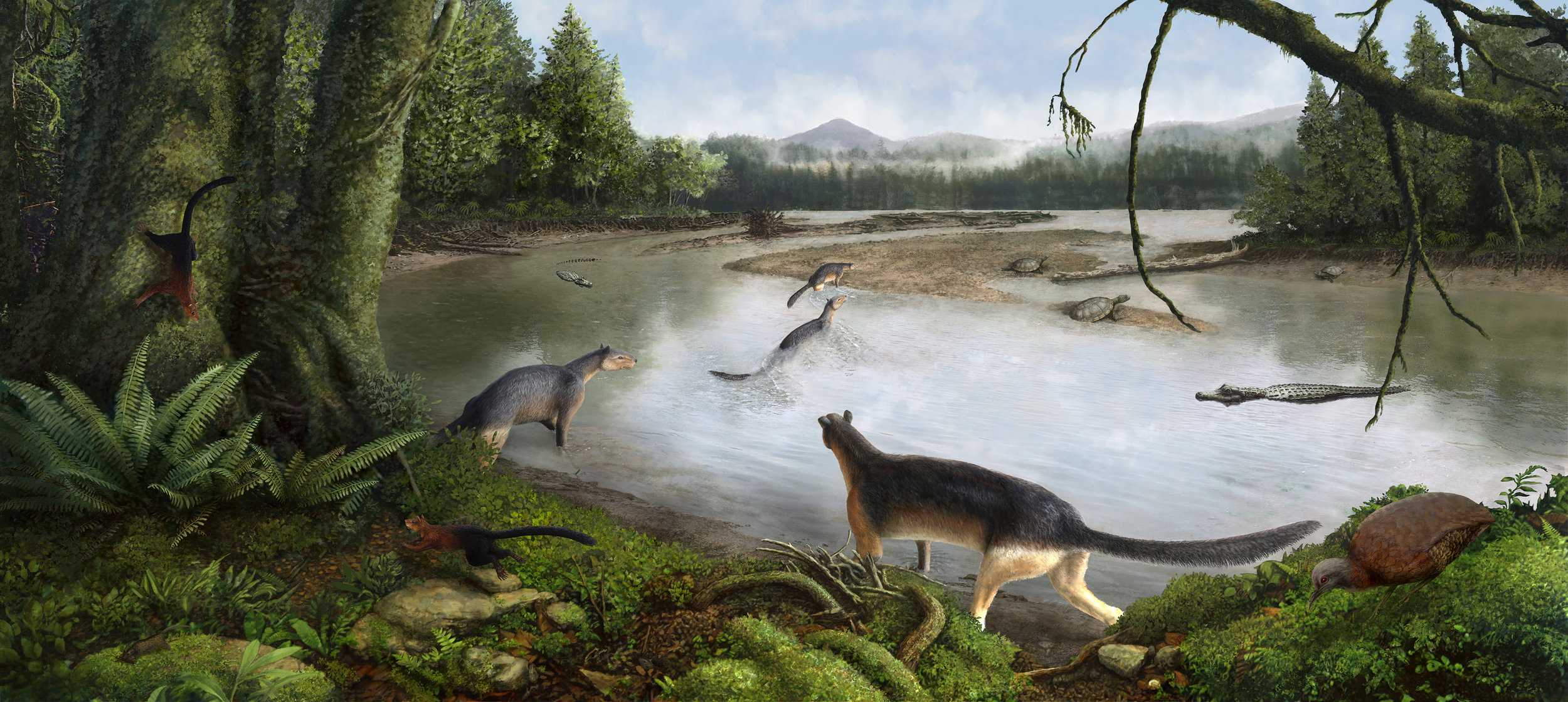Paleoart - New art created for the Raymond M. Alf Museum