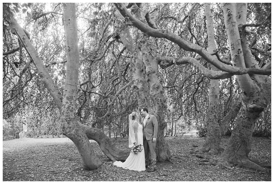 glen magna wedding danvers photos