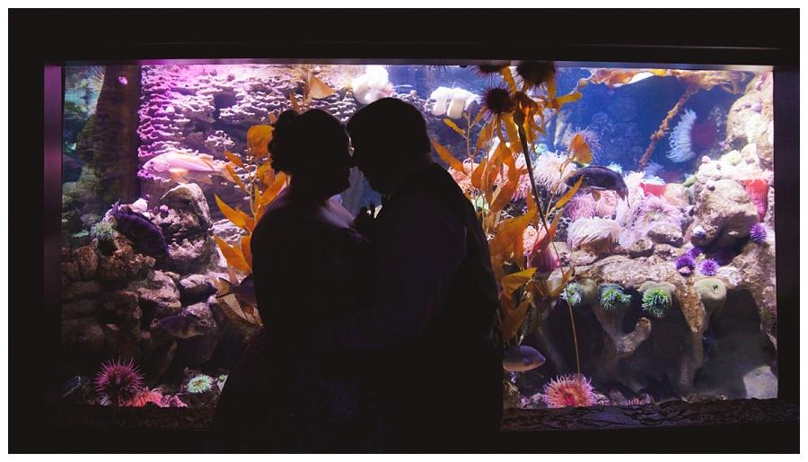 fun wedding photos inside new england aquarium