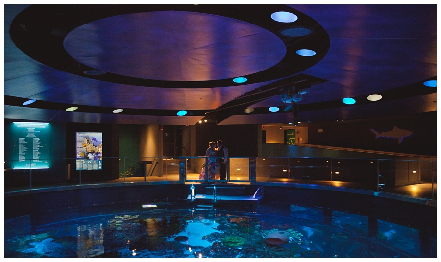 boston aquarium wedding photos